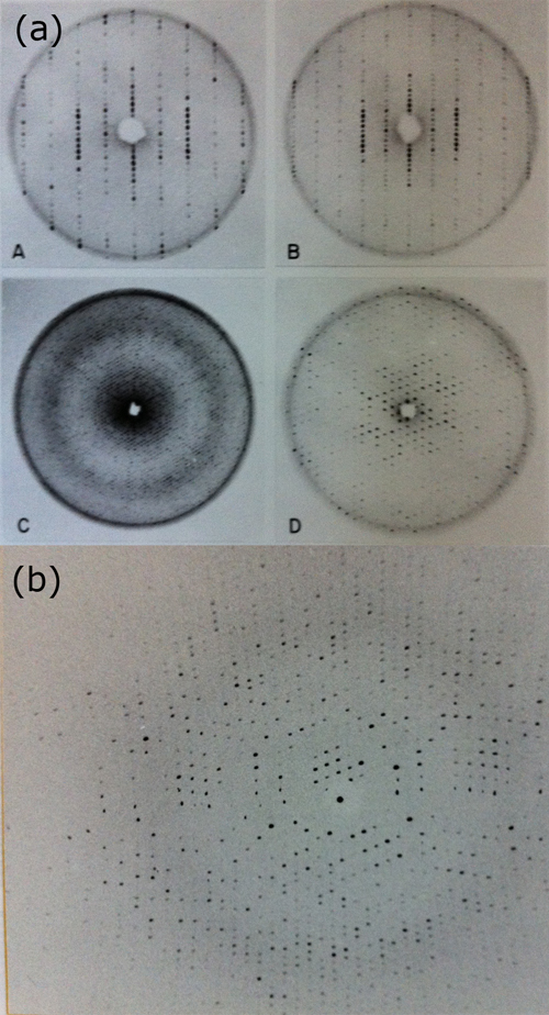 Example of the crystallographic analysis of B-Phycoerythrin, a phycobiliprotein from red algae that was the subject of the author's Ph.D. dissertation. These images reflect the technology of the time, using predominantly precession photographs (A, B, C and D) and the early oscillation patterns obtained using oscillation cameras installed in a rotating anode X-ray generator (Figure 6b).