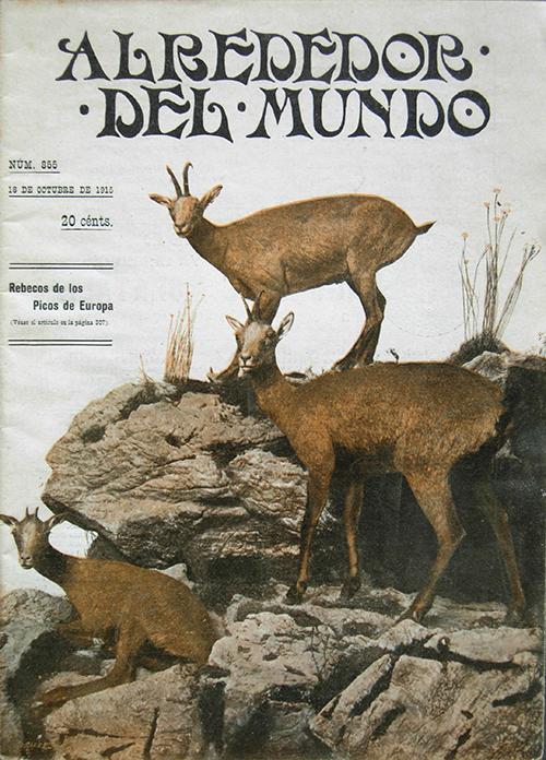 El grupo de los rebecos del Museo Nacional de Ciencias Naturales en la portada del número de 18 de octubre de 1915 de la revista ilustrada Alrededor del Mundo