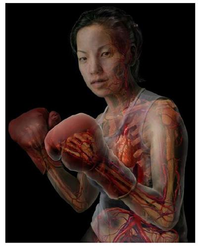 A. Tsiaras, Anatomical Travelogue/The Visual MD©, Boxeadora