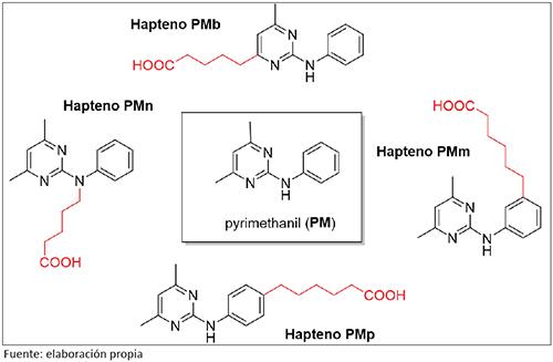 Estructura del fungicida pyrimethanil y de diferentes haptenos sintetizados con vistas a la generación de anticuerpos. El brazo espaciador y el grupo funcional, situados en posiciones alternativas de la molécula, se muestran en rojo