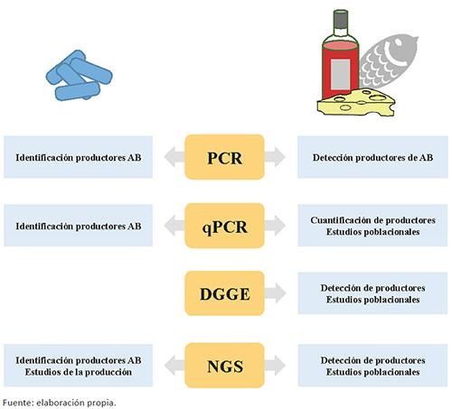 Esquema de las diferentes aplicaciones de las técnicas moleculares de detección de genes implicados en la producción de AB tanto aplicadas a cultivos puros como a alimentos.